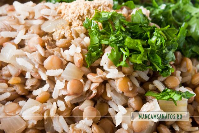 orez brun, linte verde, ceapa, patrunjel verde si schinduf