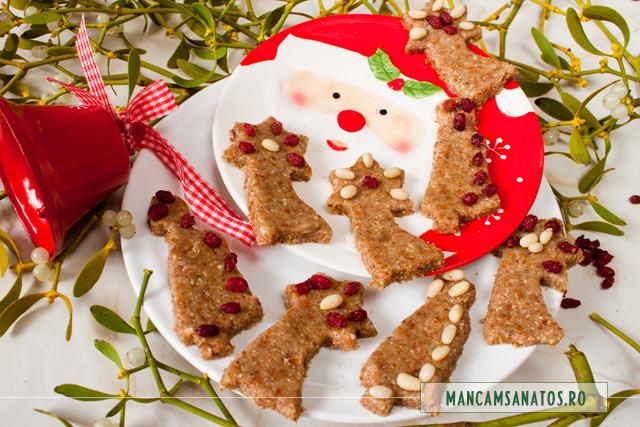 fursecuri festive, raw vegane