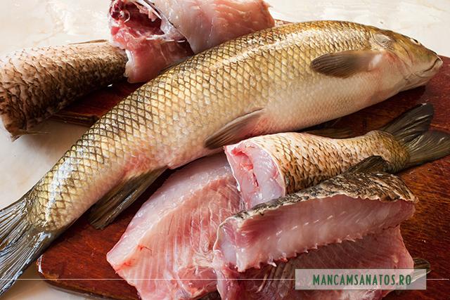 mreana proaspat pescuita, la eviscerat si portionat