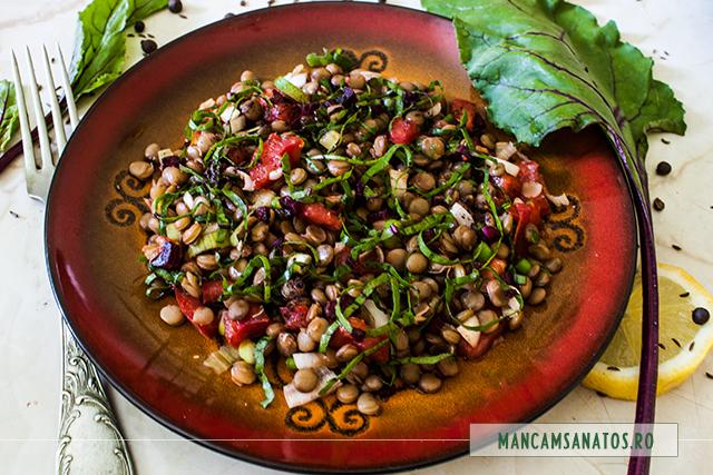 salata de linte verde, cu frunze de sfecla rosie