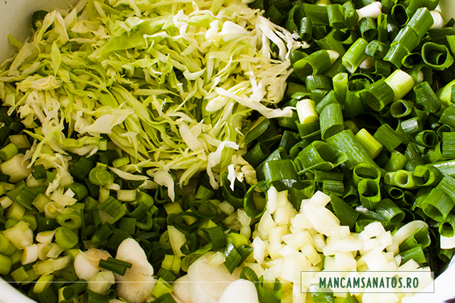 varza noua, ceapa si usturoi verde, pentru  carne de ied