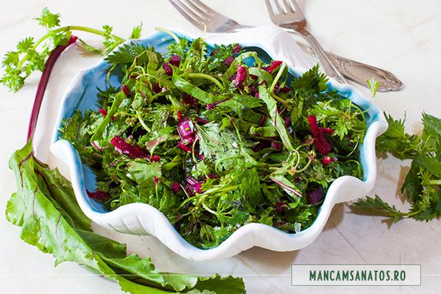 salata cruda de urzici grecesti si sfecla rosie