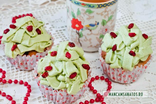 cupcakes vegane cu untisor si agrise