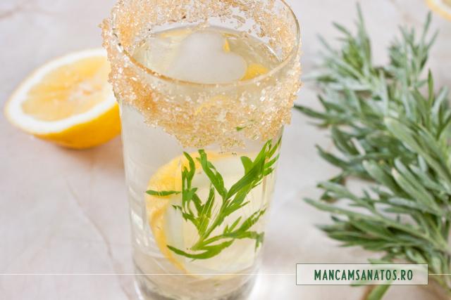 limonada cu pelin, lamaie, zahar brut si gheata