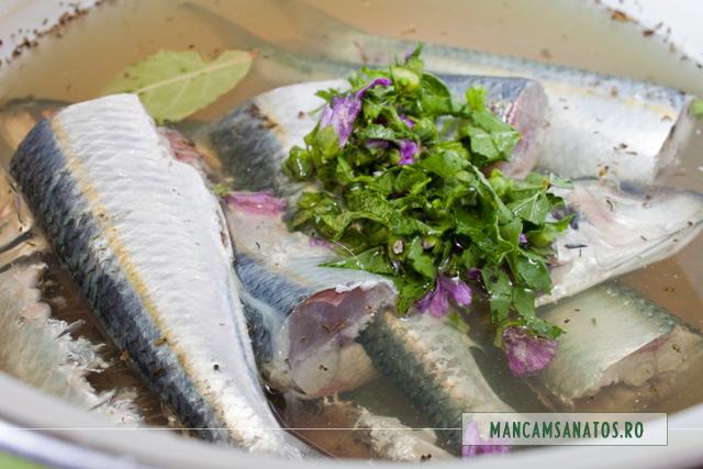 sardine si nalba tocata, pentru supa picanta de sardine, cu nalba de camp
