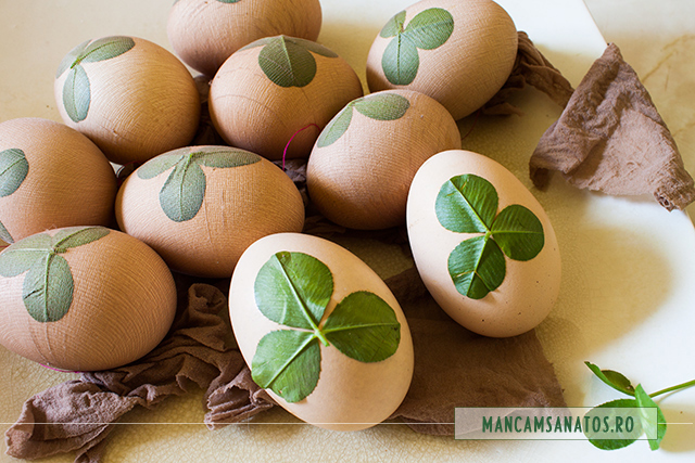 oua cu frunze de trifoi, in ciorap, pregatite pentru vopsire