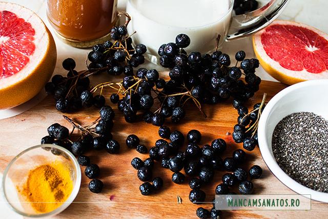 fructe de aronia si alte ingrediente pentru smoothie