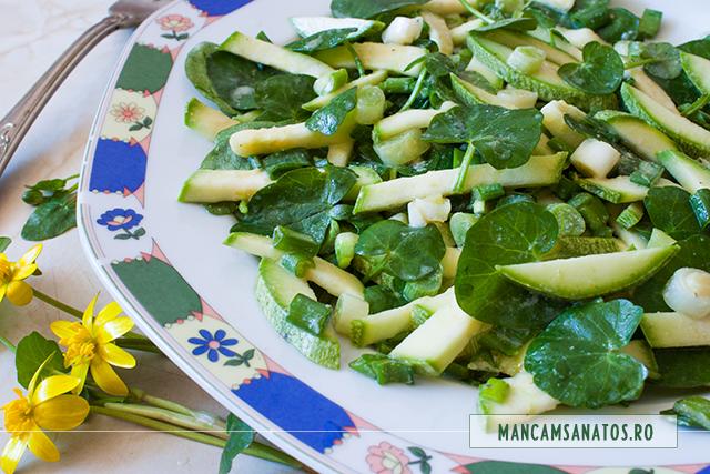 salata cruda de dovlecel, ceapa verde si untisor