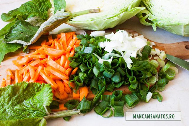 morcovi si ceapa verde, pregatite, pentru ciorba de varza noua cu frunze de brusture