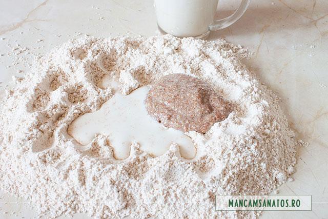 ingrediente aluat integral cu lapte vegetal si seminte de in