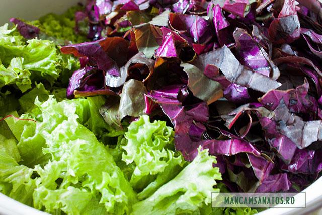 loboda si salata creata spalate si maruntite, pentru bors vegetarian