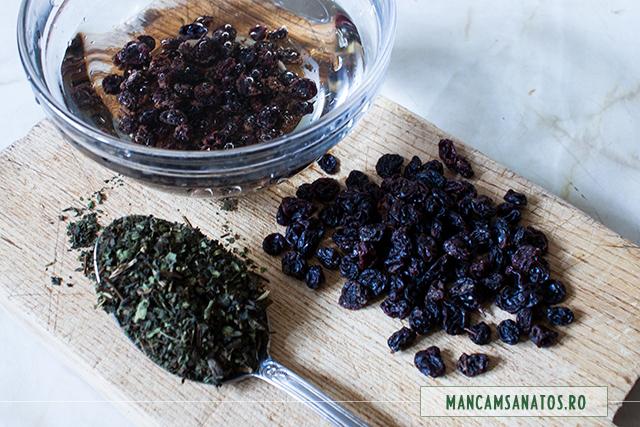 coacaze negre si urzici, pentru ceai antioxidant