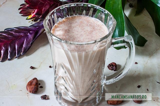 shake raw vegan, de ciocolata