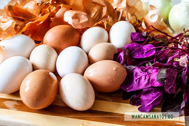 foide ceapa galbena, frunze de loboda rosie si oua, pentru vopsit de Paste