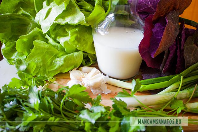 ingrediente pentru ciorba din verdeturi de primavara, cu usturoi si lapte de orez