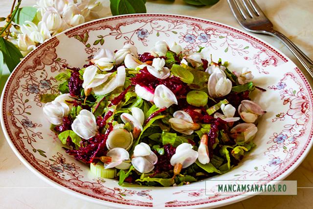 salata cu sfecla rosie, loboda verde si flori de salcam