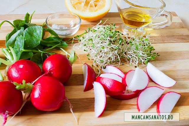 ingrediente pentru salata de untisor si ridichi, cu muguri de lucerna si rucola