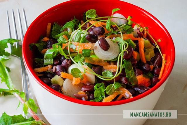 salata de fasole neagra, cu frunze de susai si mirodenii