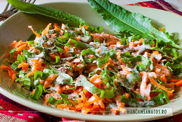 salata de morcovi, stevie si patlagina, cu dressing din seminte de canepa