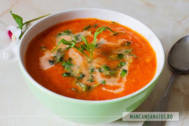supa crema de rosii, cu lapte de soia si tarhon, cu tarhon maruntit