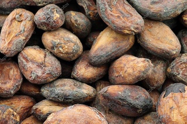 boabe de cacao, sursa de resveratrol