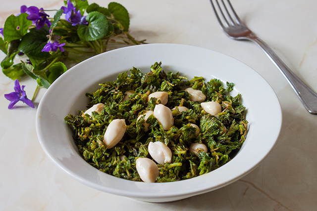 salata rawvegana, de urzici si alune