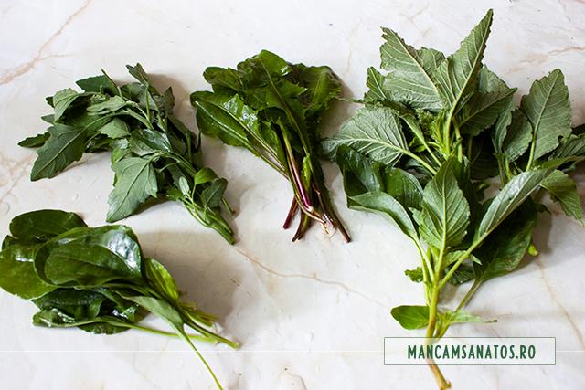 plante verzi pentru ciorba acra cu legume, plante verzi si corcoduse
