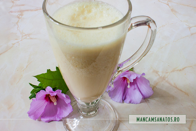 bautura hranitoare si antioxidanta, cu alune crude, stafide si mirodenii